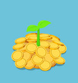 isometric little plant growing on golden coins vector image