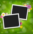 photo frame with green sunburst background vector image