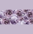 purple peony flowers background watercolor vector image vector image
