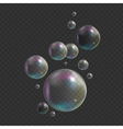 Transparent Bubbles on Dark Background vector image vector image