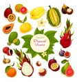 Tropical fresh fruits poster vector image vector image