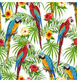 tropical seamless pattern with parrots vector image