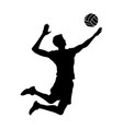 volleyball player black silhouette isolated man vector image
