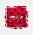 abstract natural rose petals with frame background vector image vector image