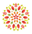 autumnal mandala fall colorful leaves vector image vector image