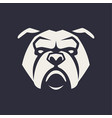 bulldog mascot icon vector image vector image