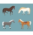 Cute horses in various poses design vector image vector image