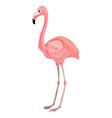 flamingo icon cartoon style vector image vector image