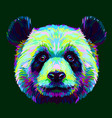 panda graphic abstract hand-drawn portrait vector image vector image