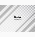 shadow overlay transparent effect light vector image vector image