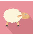 sheep with shadow icon flat style vector image
