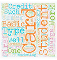 Student Credit Card 101 text background wordcloud vector image
