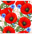 red poppies seamless vector image
