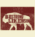 bison silhouette phrase typographical poster vector image vector image
