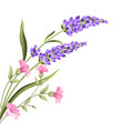 elegant card with lavender flowers vector image vector image