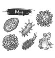 isolated sketch virus cell types hiv and flu vector image