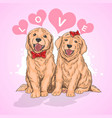 puppy cute love vector image vector image