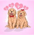 puppy cute love vector image vector image