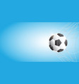 soccer football in goal net on blue background vector image