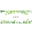 tropical forest greenery leaves branches jasmine vector image