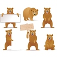 bear cartoon collection vector image vector image