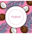 Card with coconuts Tropical abstract frame in vector image