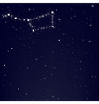 Dark Blue Sky With Constellation Of Ursa Major vector image vector image