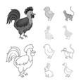 design of breeding and kitchen logo set of vector image