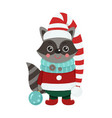 isolated cute raccoon is dressed in winter clothes vector image