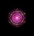 seed life golden sacred geometry mystic mandala vector image vector image