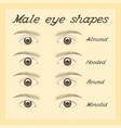 various male eye shapes vector image vector image