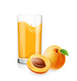 apricots juice in glass 3d realistic vector image