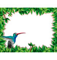 bird in nature scene vector image vector image