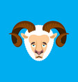 ram sad face avatar sheep farm animal sorrowful vector image