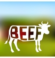 Silhouette of meat cow with text inside on blurred vector image vector image