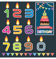 Birthday candle design vector image