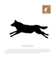 black silhouette a running wolf vector image vector image