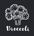broccoli icon with long shadow black vector image vector image
