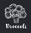 broccoli icon with long shadow black vector image