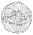 hand drawn angel fish with high details vector image vector image