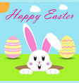 happy easter 2017 rabbit in a hold vector image vector image