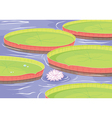 lotus flower in pond vector image vector image