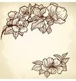 magnolia vector image vector image
