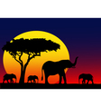 My Africa vector image vector image