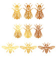 set with bees bees with eye occult bees vector image