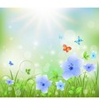 Colorful abstract summer background with flowers vector image