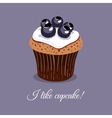 I Like Blueberry Cupcake vector image vector image