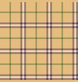plaid tartan seamless pattern vector image