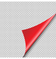red corner isolated vector image