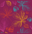 seamless pattern autumn 2 vector image vector image